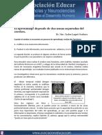 aprendizaje-depende-dos-zonas-cerebro.pdf