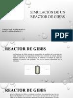Presentación gibbs.pptx
