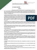CASOS DE EXEQUATUR.docx