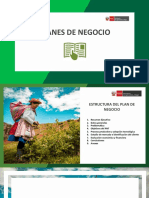 MODELO DE PNT VF.pdf