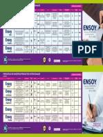 PLEGABLE ENSOY 5 caras.pdf