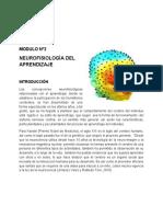 Neurofisiologia_del_Aprendizaje