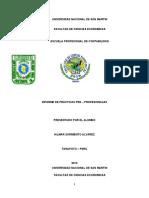 UNIVERSIDAD NACIONAL DE SAN MARTIN - INFORME DE PRACTICAS FINALES.docx