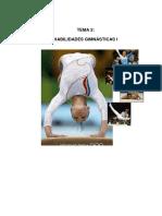 t2habilidades2.pdf