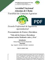 MAPA CONCEPTUAL DE VIDA UTIL DE FRUTAS Y HORTALIZAS