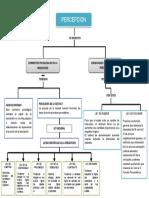 PERCEPCION.docx