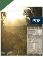 Paisajes-colectivos-Lamas-informe-final