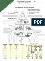 Piramida alimentelor_cls 5.docx