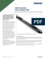 peak-gas-lift-straddle-pttep-gulf-of-thailand-cs.pdf