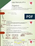 Álgebra Leng alge valorizacion y Reduccion de terminos semejantes terminado y corregido.pdf