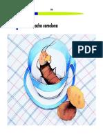 La cucaracha comelona. Lectura