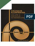 Calculus Illustrated Vol 4