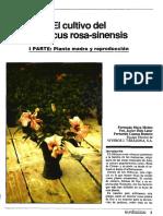 pdf_Hort_Hort_1989_52_5_20
