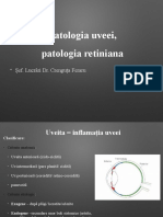 Curs 7  uveea + retina + n.o. (1)
