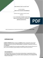 DISEÑO-DE-LA-MATRIZ-IMPACTO-AMB4