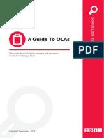 A_GUIDE_TO_OLAS.pdf