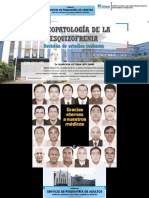 1-Psicopatologia-de-la-Esquizofrenia-Revision-de-estudios-recientes.pdf