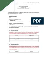 INDICACIONES TRABAJO FINAL TDCL