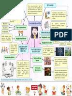 organizador-grafico-carlos-mari