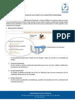 Protocolo para aula Virtual