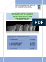 Facetas grupo 4.pdf