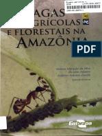 pragas agricola e florestas amazonica