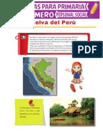 La-Selva-del-Perú-para-Primer-Grado-de-Primaria