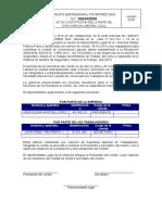 constitucion del CCLferro