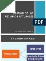 RECURSOS NATURALES Y CONTAMINACIÓN civil