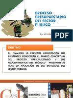 3. PROCESO PRESUPUESTARIO DEL SECTOR PÚBLICO 29.02.20.pptx