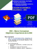 8. Marco Conceptual ZEE.pdf