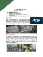 Ceniza Volcanica W24-Zona Guayas R02.pdf