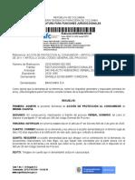 Auto admisorio 2020160045-002-000 Daniela Echeverry
