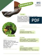 蟒蛇.pdf