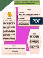 infografia 1