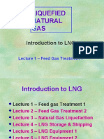 LNG Training 1 - Feed Gas Treatment 1