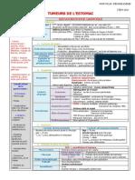 300 Tumeurs de l_estomac.pdf