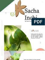 Nuez Sacha Inchi