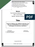 mas v.pdf