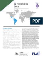 IIARF CBOK Regional Reflections Latin America October 2015