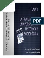 Trabajo social con familias Tema_1_TS_Familias_-_Concepcion_Castro_2014-15