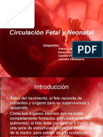 Circulación Fetal y Neonatal (completo, completo)(2)