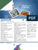 Pulso País - Agosto 2020