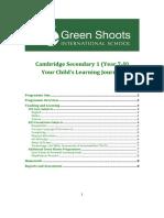 CS1-Curriculum-Guidance.pdf