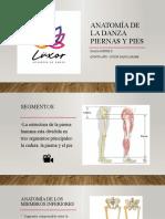Anatomía de la danza Piernas y pies  - Diana Cortés