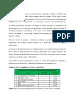 PRODUCCION SOCIOECONOMICO.docx