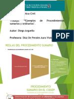 SUMARIO Y ORDINARIO.pptx
