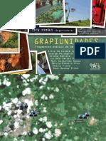 grapiunidades.pdf