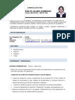 CV  EVELYN HILARIO Z.. (1)