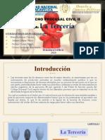 DIAPOSITIVAS DE LA TERCIARIA